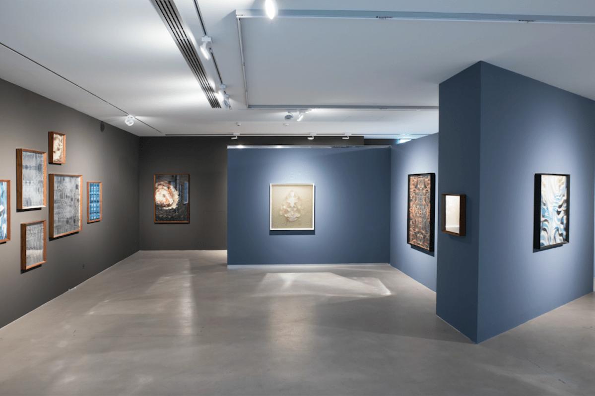 """""""Maurizio Donzelli. La linea del tutto"""" A cura di Luca Cerizza, 2016, Cortesi Gallery, Lugano, foto di Ginevra Agliardi."""
